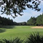 Highlands Reserve Golf Hole Though Bushes